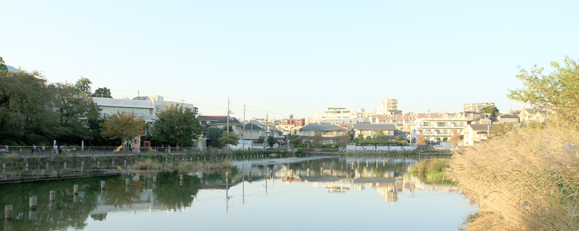 大田区洗足池